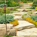 Rock Steps, Trees & Gardens